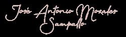 José Antonio Morales Sampallo – Comercio internacional, Agente Inmobiliario, Asesor Financiero